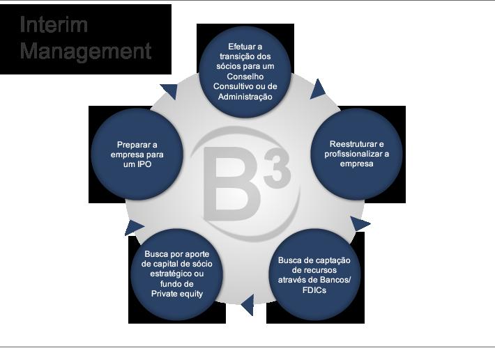 01 - Interim Management